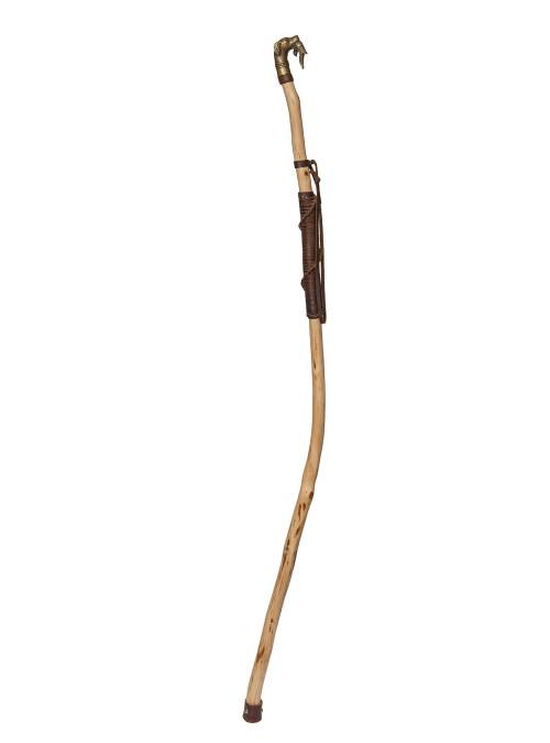 Man's best friend walking stick
